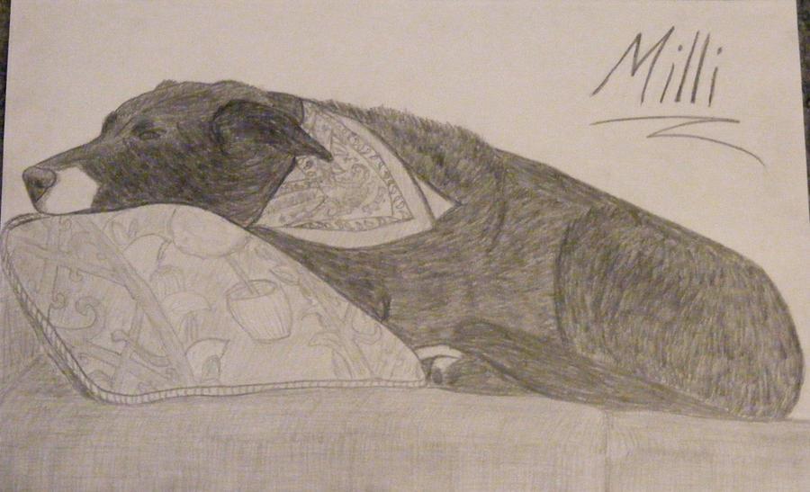 Milli in Pencil by xALPHAxWOLFx