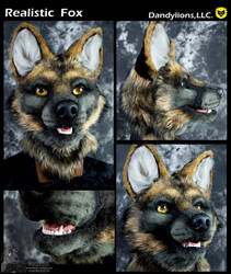 Realistic Fox by DandylionsLLC