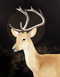 Deercember #13 - Eld's deer