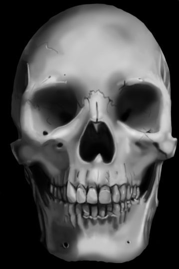 Realistic Skull By Eldizard