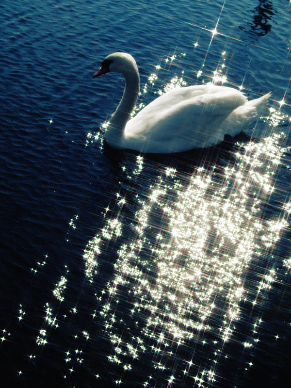 The Swan Princess by GlareUsy