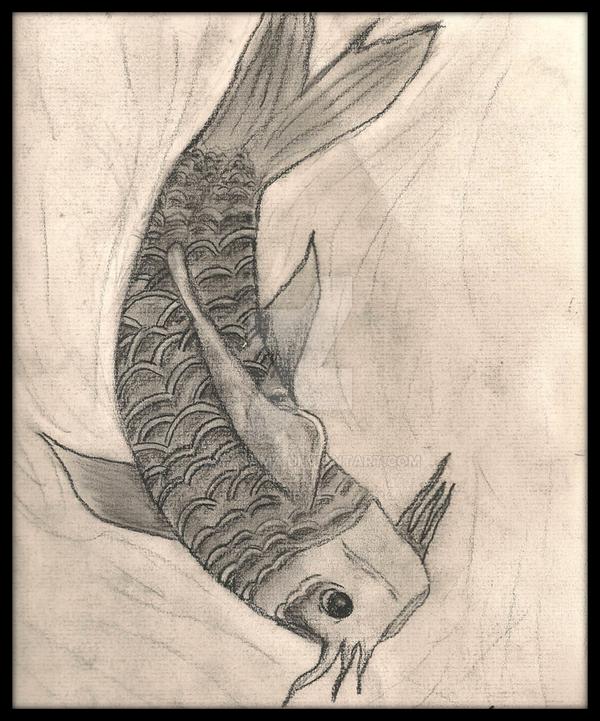 Koi by Saiyasama