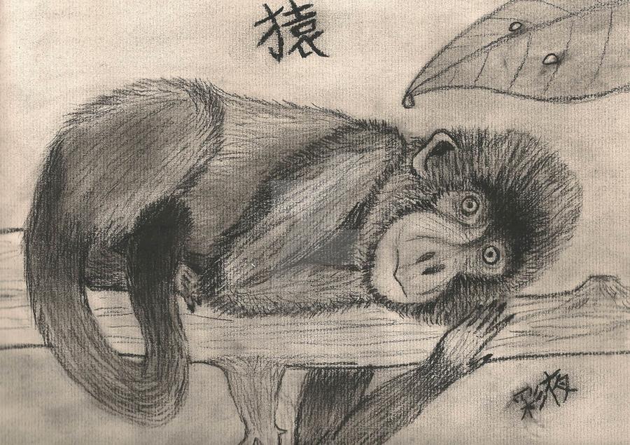 Saru by Saiyasama