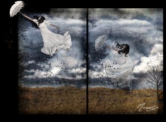 FLY II by hypnotises