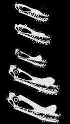 The Skulls of Hamipterus tianshanensis by SassyPaleoNerd