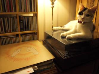 Cats have good taste by devronius