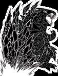 Tyranitar Used Stone Edge! by LukeTheRipper
