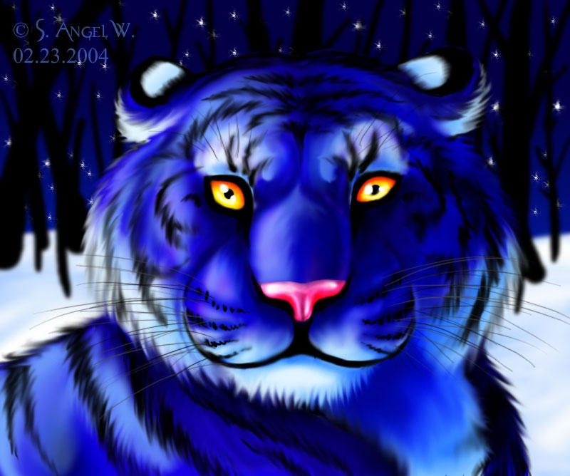 Blue Tiger Wallpapers Hd Blue | Volvoab