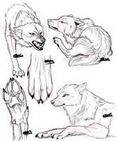 Anatomy Practice 2 by KiRAWRa