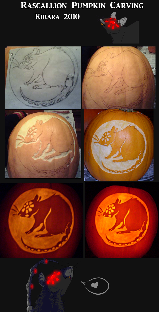 Rascallion Pumpkin 2010 by KiRAWRa