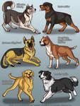 BSK Dogs 1