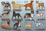 BSK Dogs 2
