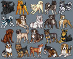 Plush Dogs 1