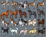 Plush Dogs 5