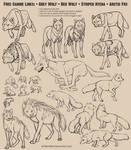 Free Canine Lines