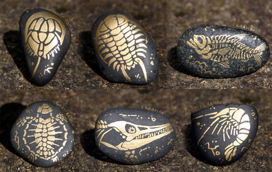 Painted Fossil Rock Magnets - Sea Animals by KiRAWRa