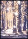 Soft Snowfall