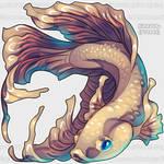 Aywas RCC: Pisces