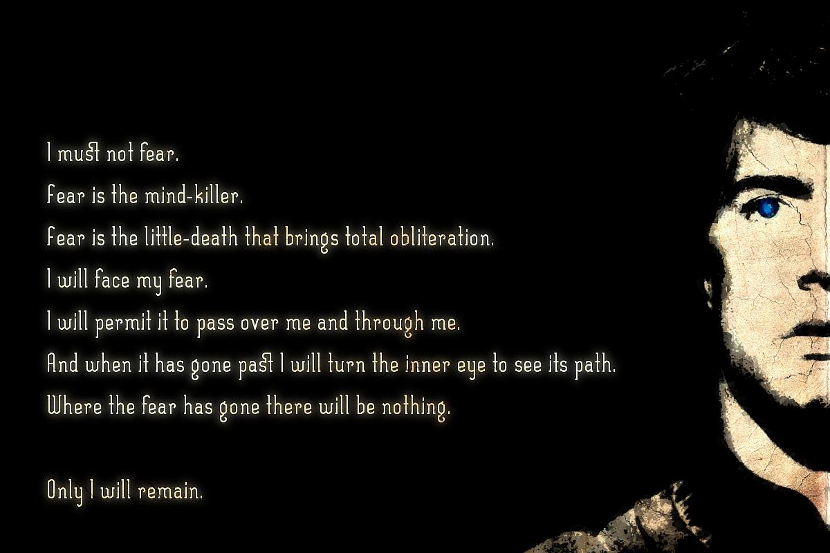 Image result for fear mind killer