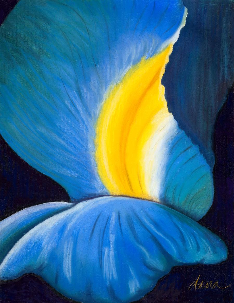 Iris by danastrotheide