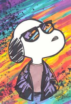 marker : Joe Cool
