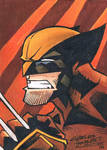Wolverine sketch card