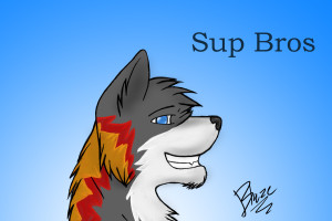 blazingwolf-fang's Profile Picture