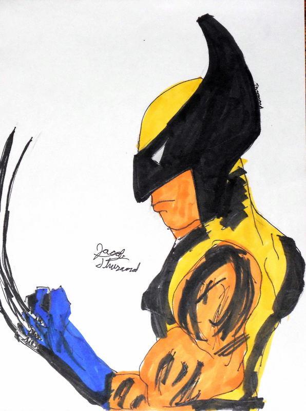 Wolverine by jt3fan