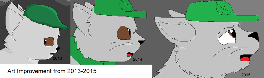2013 Through 2015 by Its-Mousepelt