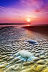 Walberswick Beach Suffolk 4. by Wayne4585
