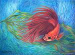 Fish Eye View by kelch12