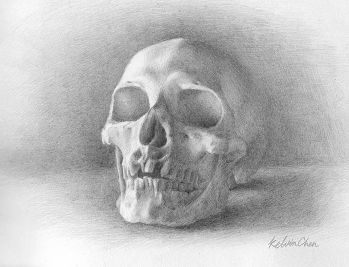 Skull Study SVA 2013-04-21 by kelch12