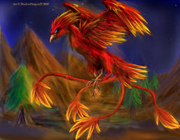 Phoenix - Art Trade with Shini by ShadowDragon22