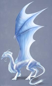 Makani Dragon Commission