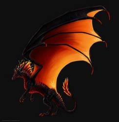 Dragon Design 2 - Adopt Auction [OPEN]