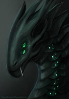 Xeno Dragon Portrait