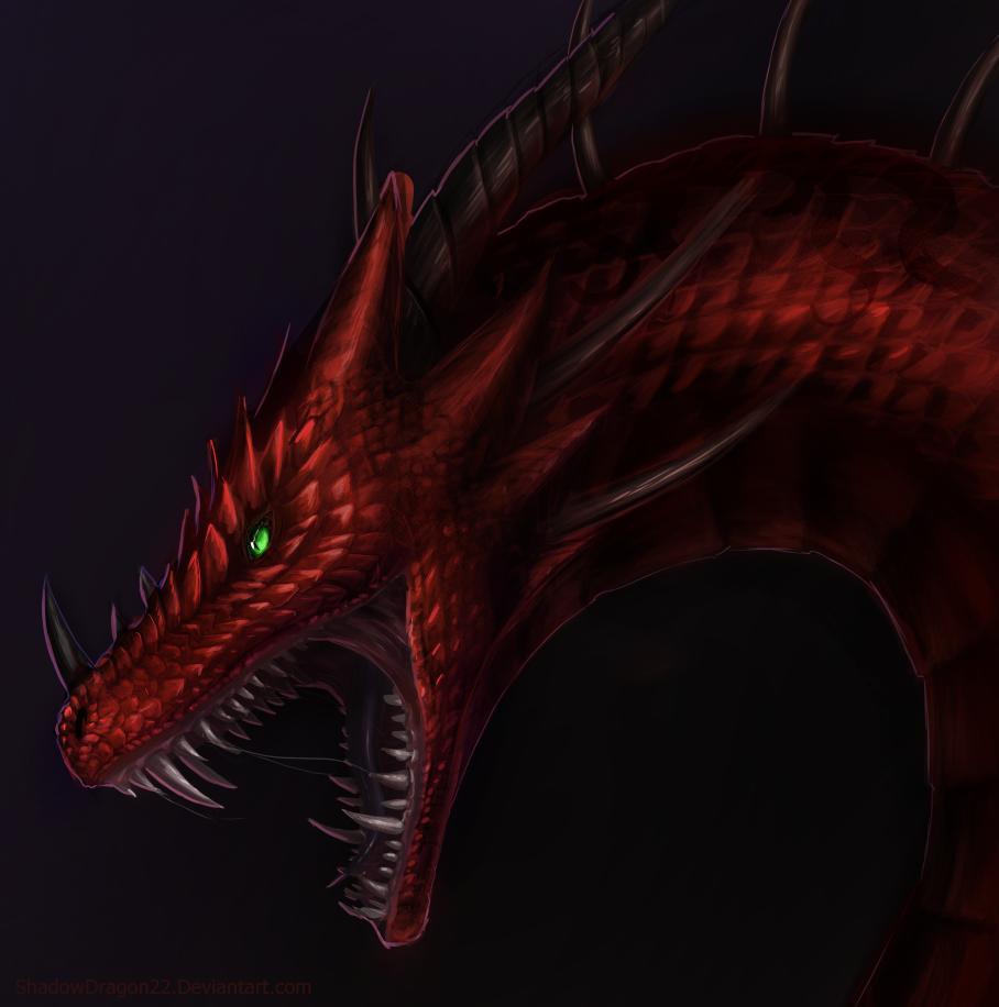 Ven Dragon Portrait