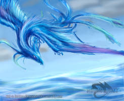 Water Phoenix by ShadowDragon22