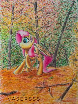 An Autumn Walk by vaser888