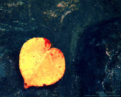 Heart everywhere by MariamMohammed