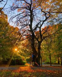 Kelvingrove Park -1-