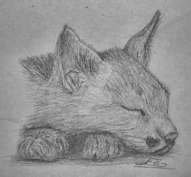 Asleep by Eva0707