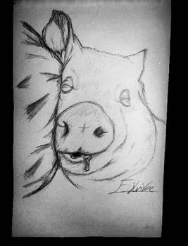 Dream PIG.