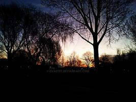 Late sunrise