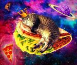 Sammis Cat in space