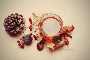 Autumnal by Alessia-Izzo