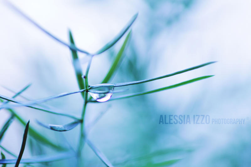 Cold by Alessia-Izzo