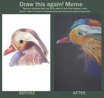 Before and after - Mandarian ducks