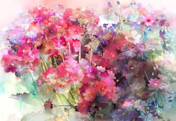 Primula by SaigaTokihito