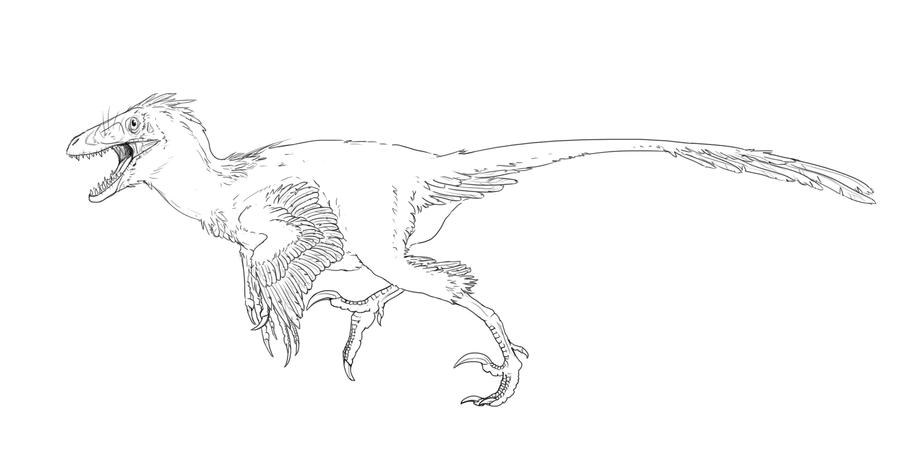dinosaurus utah raptor coloring pages - photo#7